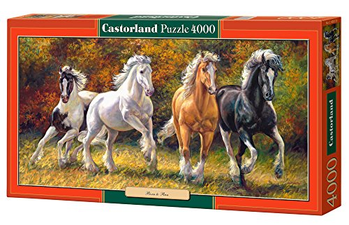 Jigsaw Puzzle - Born to Run - Castorland - 4000 Pezzi