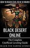 Black Desert Online Guide: Reach Level 50 in 10 Hours (English Edition)