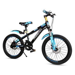 Bicicletas Triciclos Infantil Pedal 3~15 Años Chico Y Chica De Montaña Vieja 18 Pulgadas Pedal del Estudiante (Color : Blue, Size : 18 Inches)
