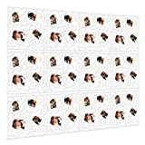 Kernorv Hanging Room Divider 12 pcs Photos Room Diviseur Panneaux Écran