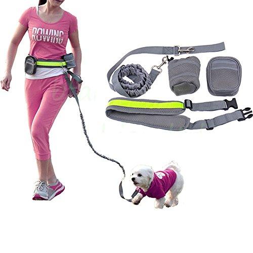 Manos libres perro de perro Nylon Correa ajustable con titular de la botella, bolsa de cintura, raya reflectante Perfecto para correr, caminar, senderismo y jogging con su perro (Gray)