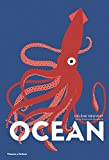 Ocean (Lift the Flap Book)