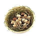 kleine süße Deko Eier Eier Ostern Osterdekoration Kunststoff Ostereier Dekoeier (OST-18er-Natur-A-3cm)