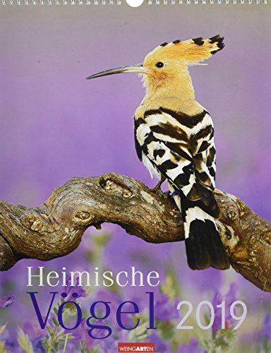 Heimische Vögel - Kalender 2019