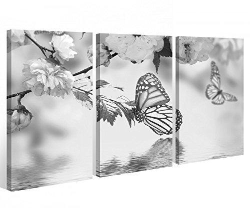 myDruck-Store Lienzo 3 Piezas Negro Blanco Agua Mariposa Flores Imágenes 9A409-120x80cm (3Stk 40x 80cm)