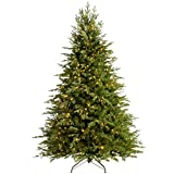 WeRChristmas Pre-Lit Grand Alaskan Fir Multi-Function Christmas Tree with 400-LED Lights - 6 feet/1.8 m, Green