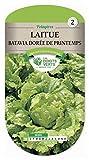 Les doigts verts Semence Laitue Batavia Dorée de Printemps