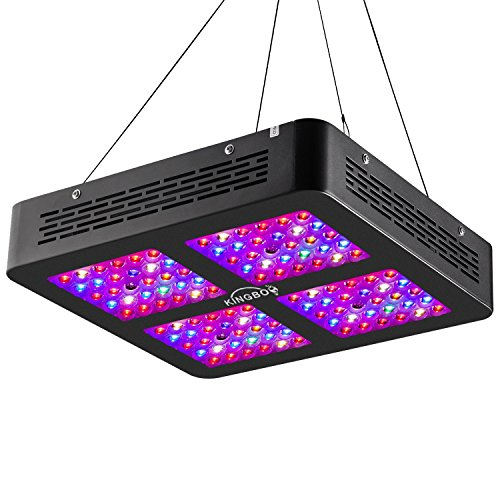 KINGBO Dual Optical Lens-Series 600W LED Grow Light Review - Our Best Pick