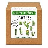 Kit para Cultivo de Cactus Garden Pocket