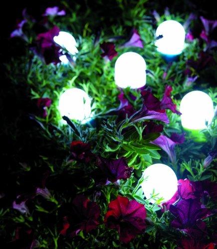 Dreh dir Licht Grün 2er Set - 5