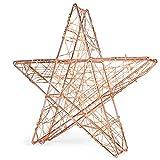 SnowEra Luz LED Decorativa de Metal en Forma de Estrella Color Plata – Adorno de Navidad con 140 microLED de Color Blanco Cálido – Estrella Luminosa