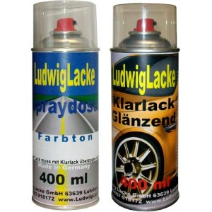 Ludwiglacke Spraydose