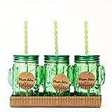 Set De Vasos Cactus. Cristal, Metal Y Plástico x 3 Unidades
