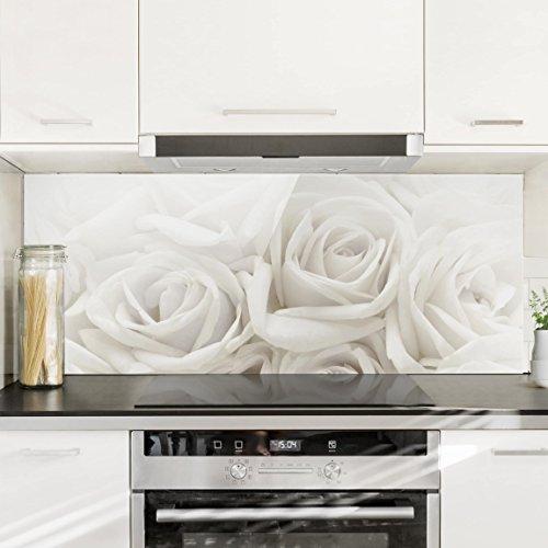 Bilderwelten paraschizzi in vetro white roses panoramico paraschizzi cucina pannello - Paraschizzi cucina ...
