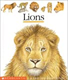 Lions (First Discovery Books) by Pierre De Hugo (2000-07-01)