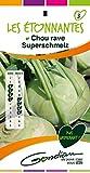 Gondian 514423 CP 3 Semences Chou Rave Superschmelz Etonnantes Vert 1 x 8,1 x 16 cm