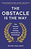 The Obstacle is the Way: The ancient art of turning adversity into opportunity