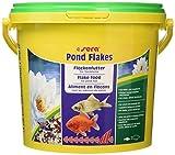 Sera Pond Flakes 3,800 l XXX