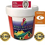 Ecoccel AISLACCEL, Pintura, pintura pared, pintura pared interior, mejor pintura aislante, pintura...