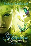 The Hilarion Connection©, Book Two (English Edition)