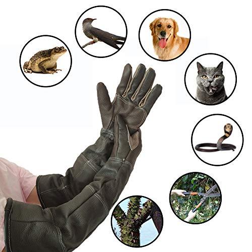 Guanti in Pelle per Uso Pesante, Guanti da Giardinaggio a Prova di Spina e Manipolazione di Animali...