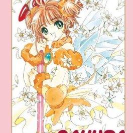 Card Captor Sakura. Perfect edition: 4