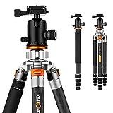 K&F Concept TC3134 Carbon Stativ Kamerastativ Reisestativ Fotostativ mit 3D-Kugelkopf 31mm Max Rohrdurchmesser max. Höhe 168cm Tragfähigkeit 14 Kg