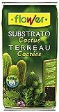 Mezcla Para Cactus Sustrato 5L