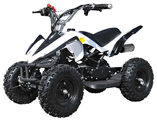 Mini Kinder ATV 49 cc Racer Pocketquad 2-takt Quad (weiß / schwarz)