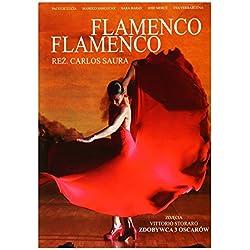 Flamenco, Flamenco [DVD] [Region 2] (Audio español)