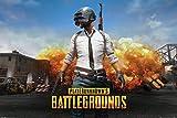 Player Unknown's Battlegrounds Poster Playerunknown