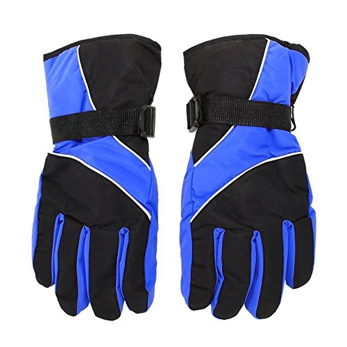 69ea3d42d5ada0 Herren Ski-Handschuhe - TOOGOO(R)Herren Ski Handschuhe Thermal wasserdicht  fuer das Winter Outdoor Sports Snowboard (blau)