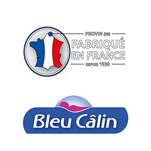 Bleu Câlin Lot de 2 Oreillers Confort 'Alaska' Blancs 65x65 cm OCPI 28