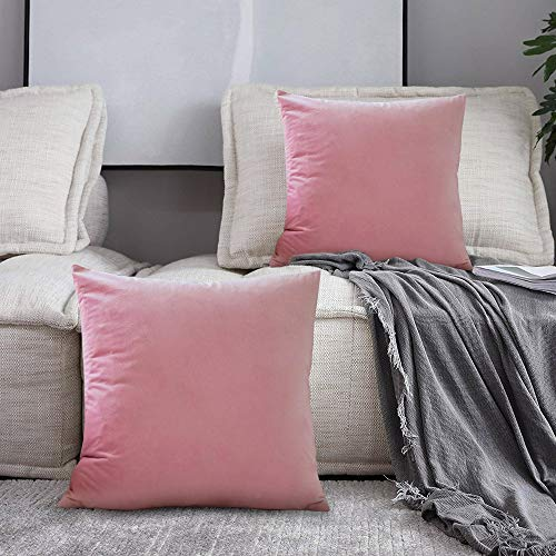 SPECOOL 2 Pacchi Fodera per Cuscino Copricuscino in Velluto Decorativi Fodere con Cerniera Invisibile per Soggiorno per Cuscino per Divano Camera da Letto Casa Auto, 45 x 45 cm (Pink)