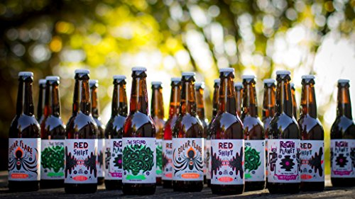 Pack-Dcouverte-12-Bires-Artisanales-Franaises-33cl-Big-Bang-Beers-Artisan-Brasseur-InterstelLoire-Alpha-Lyrae-Solar-Flare-Red-Shift-The-Second-Law-Andromeda-Rogue-Planet