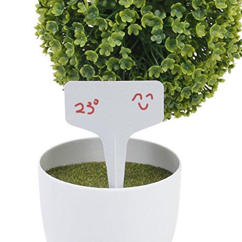 100pcs etiquettes en plastique t type pour plante graine for Plante plastique pas cher