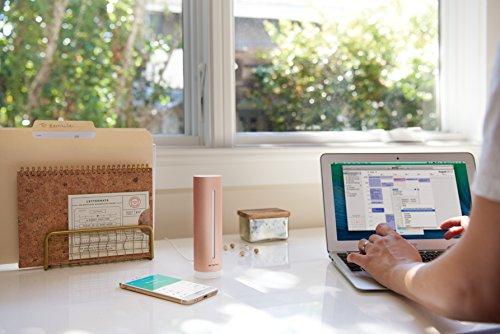 51t8FRIOTyL [Bon Plan Netatmo] Netatmo Capteur de qualité de l'air intérieur Connecté, température, humidité, Bruit, CO2