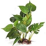 DIGIFLEX Decoración Hojas Verdes para Acuario 30cm Plantas Artificiales para Acuarios que Lucen como Plantas Verdaderas