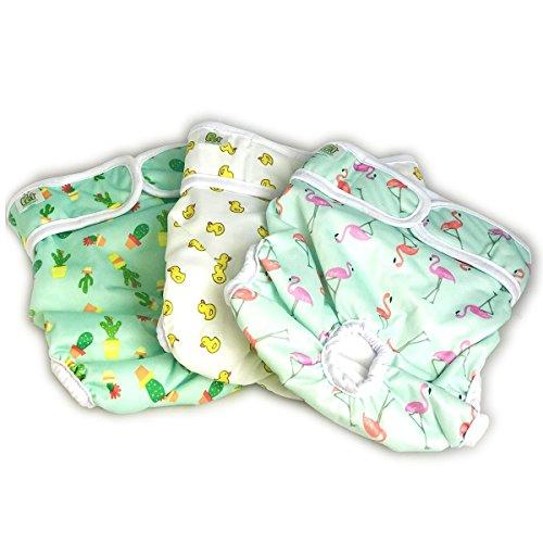 Pet Magasin - Pannolini Cane Lavabili XS - Mutande Igieniche Assorbenti per Maschio, Femmina, Cuccioli e Altri Animali - 3 Pezzi