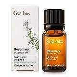 Rosmarino Rosemary (Spagna) - 100% puro, non diluito, biologico, naturale e terapeutico di olio essenziale per aromaterapia diffusore, salute della pelle e Relaxtion 10 ml - Gya Labs
