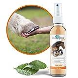 Ida Plus - Mauke Spray für Pferde 200 ml - Mauke Mittel gegen Strahlfäule & Fesselekzem - Zur einfachen & schmerzfreien Haut- & Hufpflege - schnell & zuverlässig - hautfreundlich & regenerierend