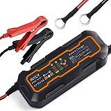 INTEY Chargeur de batterie, 6/12 V 5A, Mainteneur De Batterie, Chargeur de...