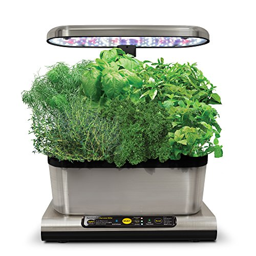 AeroGarden Miracle-Gro Harvest Elite con Gourmet Herb Seed Kit, Acciaio Inossidabile, 25 x 17 x 30 cm