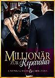 Millionär zur Reparatur