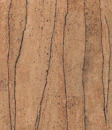 Korkstoff / Korkleder: Div. Designs, Möbelbezug, Kissenbezug, Bezugsstoff, Lenkradbezug, veganes Leder (div. Größen) (70x50, Cactus)