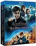 Pack Harry Potter (1-8) + Animales Fantásticos Blu-Ray [Blu-ray]