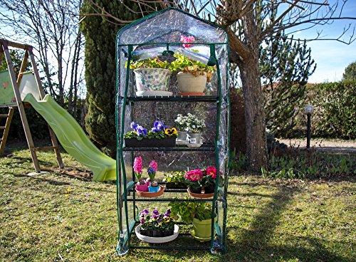 interougehome Mini Serre de Jardin Botanique 4 étagères 69x49x158cm ...