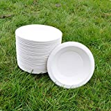 Sugarcane Bowl 18cm 450ml (50pack) BIOPAC Round Natural Alternative For Plastic P109 (50)