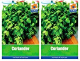 De Ree 2 Packs of CORIANDER Herb Garden Household SEEDS - Approx 200 Seeds per pack