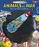Animals del mar (Llibre llanterna)